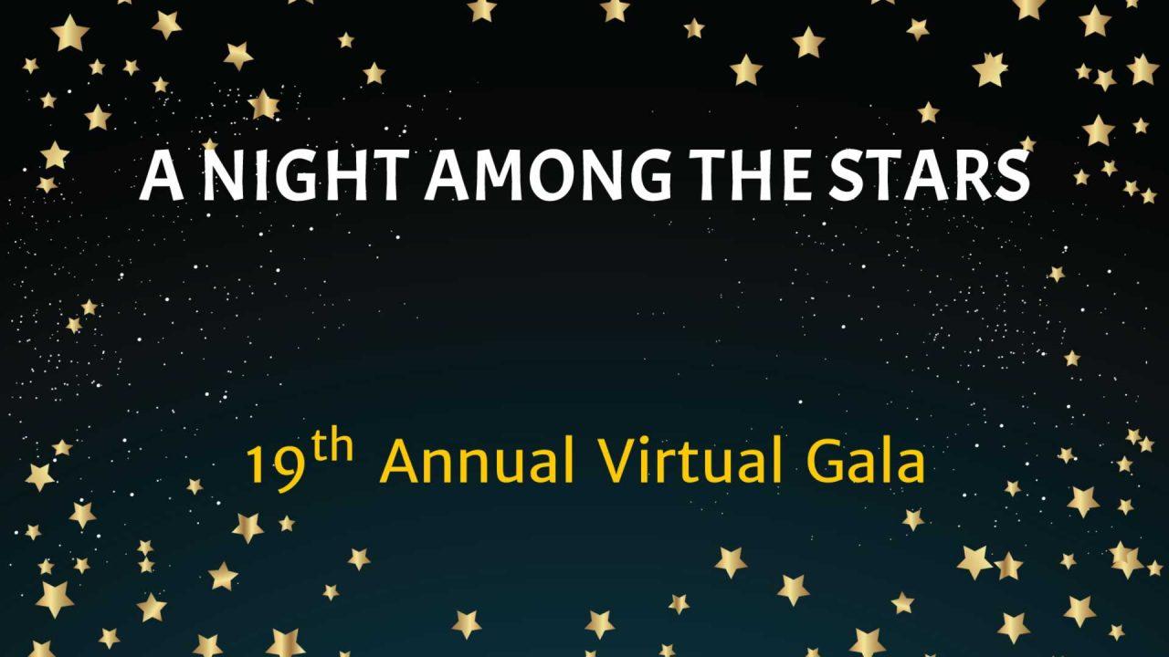 AIM for SEVA Annual Gala